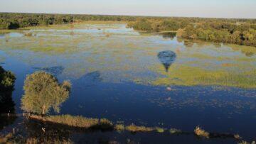 Afryka – Wyprawa na safari