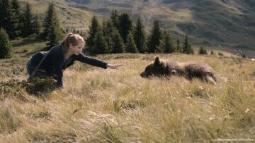 Klara i tajemnica niedźwiedzi